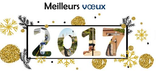 image-actualites-meilleurs-voeux-2017-1