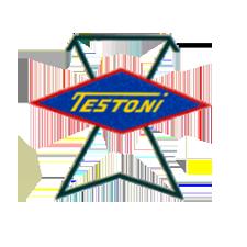image-references-logo-testoni